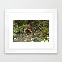 Dinosaur Spinosaurus Framed Art Print