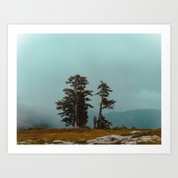 Pacific Northwest Lake Art Print