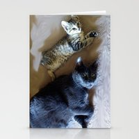 Kitty see kitty do... Stationery Cards