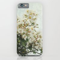 iPhone & iPod Case featuring Cherry Blossoms by Anna Delores