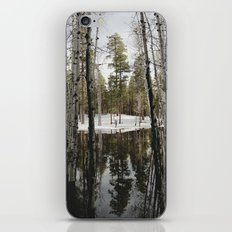 Snowy Forest Grammer iPhone & iPod Skin