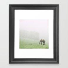 Leopard in the mist.  Framed Art Print