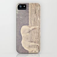 iPhone 5s & iPhone 5 Cases featuring Pretty White Pony  by Laura Ruth