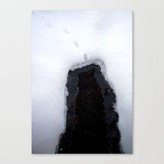 Snow 8 Canvas Print
