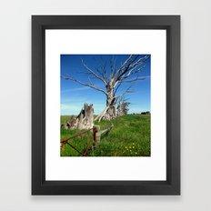 Blue sky, Dead Trees Framed Art Print