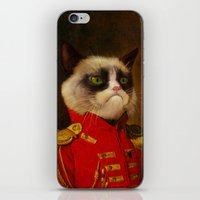The Cat Is Grumpy iPhone & iPod Skin