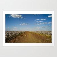 Cotton Fields In Brazil Art Print