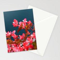 Bay Side Pink Stationery Cards
