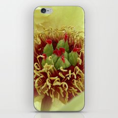 peony bloom macro XXIV iPhone & iPod Skin