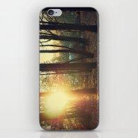 Winter in Canada iPhone & iPod Skin