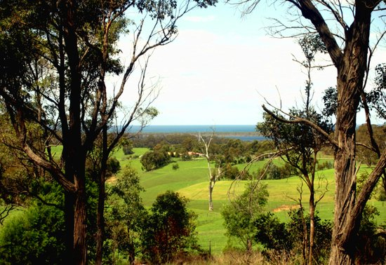 Farming properties over-looking the Great Southern Ocean Art Print