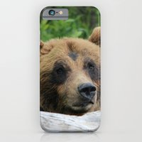 iPhone & iPod Case featuring Alaskan Brown Bear :: The Grizzly by RipdNTorn