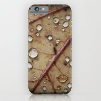 iPhone & iPod Case featuring A Close Up Of A Wet Leaf by Andrew Sliwinski