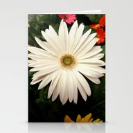 Stationery Cards featuring Daisy by Infloence