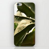 Sun Lit Green Life iPhone & iPod Skin