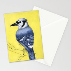 Blue Jay Stationery Cards