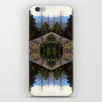 Quatriflora iPhone & iPod Skin
