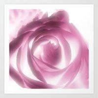 Rose Xray Art Print