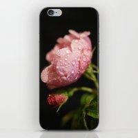 Weeping Rose II iPhone & iPod Skin