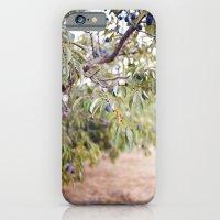 PLUM FARM iPhone 6 Slim Case