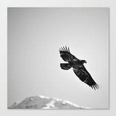 Libre comme l'air Canvas Print