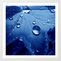 Water Pearls Art Print