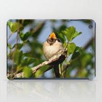Singing swallow iPad Case
