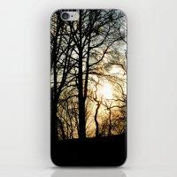 Sunset Woods iPhone & iPod Skin