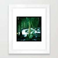 Yosemite Trees Framed Art Print