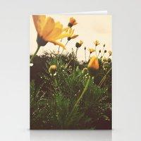 Post-Rain Yellows Stationery Cards