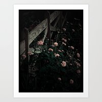 on the fence and in the dark Art Print