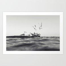 160228-8353 Art Print
