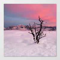 Sunrise in Yellowstone National Park Canvas Print