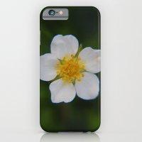 White Strawberry Flower iPhone 6 Slim Case