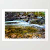 Forest Pool Art Print
