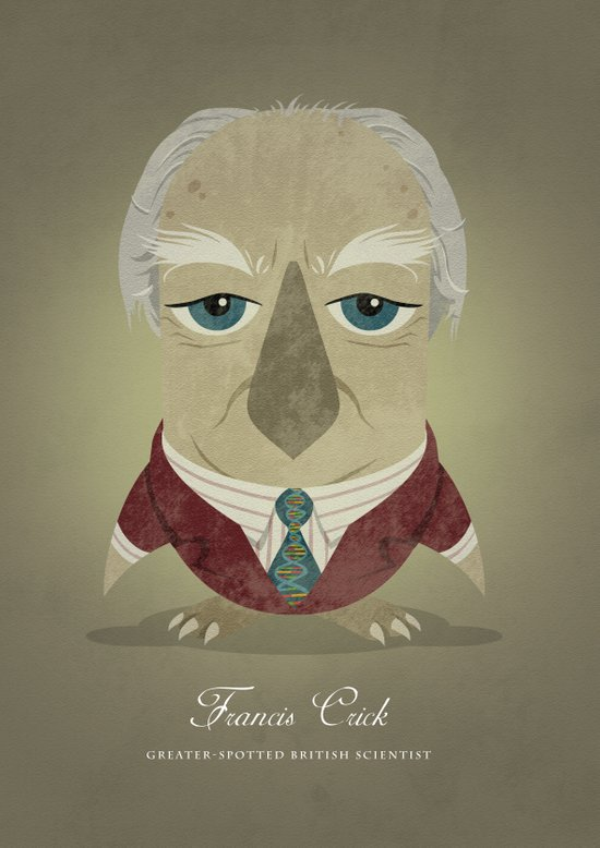 Francis Crick - Greater-spotted British Scientist - as an owl. Art Print