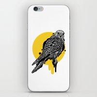 Falk iPhone & iPod Skin