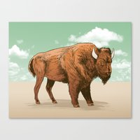 Buffalo Sky Canvas Print