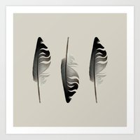 Feathers in the Light Art Print