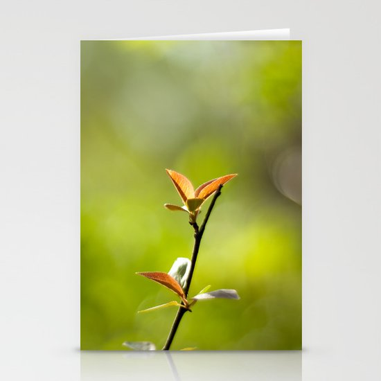 Spring Begins Stationery Card