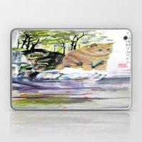 Lake Of Desires Laptop & iPad Skin