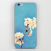 Pretty in the Sky iPhone & iPod Skin