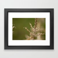 Macro Harvest Framed Art Print