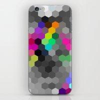 Oswego iPhone & iPod Skin