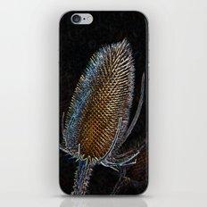 Golden Teasel iPhone & iPod Skin