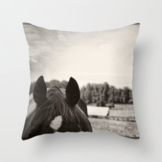 In the Quiet Country Throw Pillow