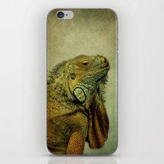 Green Iguana iPhone & iPod Skin