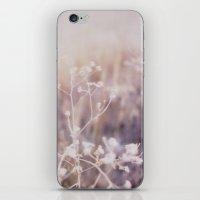 Twigs Polaroid iPhone & iPod Skin