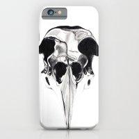 Birdskull  iPhone 6 Slim Case