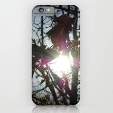 I Saw the Light iPhone 6 Slim Case